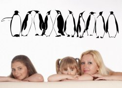 Penguins-in-Row-Wall-Decal