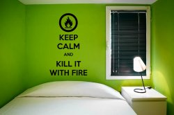 'Keep Calm and kill it with fire' - Meme Vinyl Decal