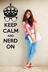 'Keep Calm and nerd on' - Geek Wall Sticker