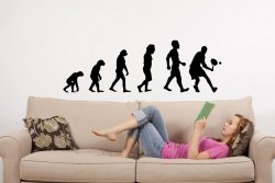 Evolution - Tennis - Great Wall Decal
