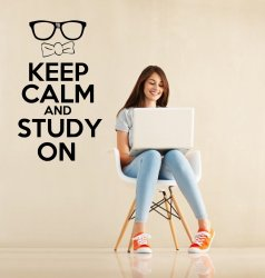 'Keep Calm and Study On' - Kid's / Teenage Room Wall Decoration