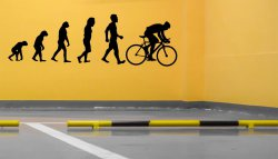 Evolution Road Bike Large Removable Wall Sticker