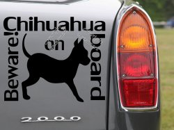 Chihuahua on board. Stunning dog lover's car sticker, bumper decal.