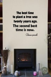 JC Design 'The best time to plant a tree was twenty years ago. The second best t