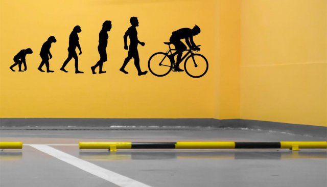 evolution road bike large removable wall sticker | wall stickers