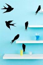 Set-of-cute-Swallows