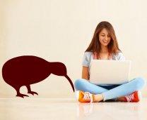 Kiwi-bird-sticker-on-the-wall