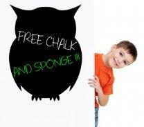 Lovely Owl - Chalkboard Sticker With Free Chalk And Sponge