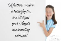'A feather, a robin, a butterfly too, are all signs your Angels...' Stunning Wall Sticker Quote