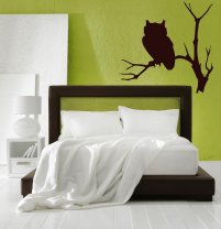 Enigmatic Owl Art Decor